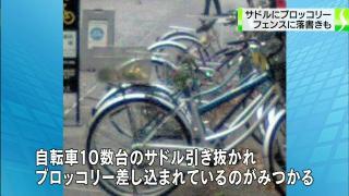 0e5adbbd.jpg