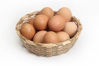 chicken-1686641_640