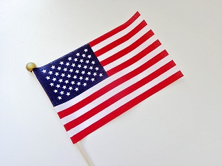 flag-1483296_640