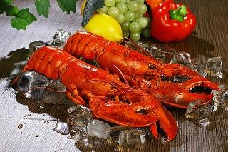 lobsters-1527602_640