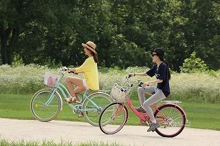 bike-1160095_640.jpg