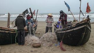 漁師 海 釣り 漁業