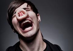 イメージ 豚 笑い