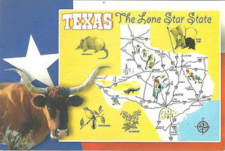 テキサス 米国