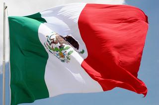 メキシコ Flag