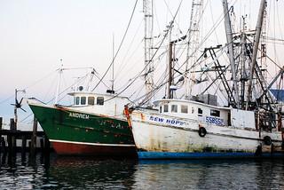 漁業 船 海