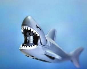 サメ 海 イメージ