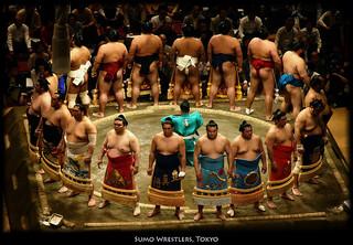 相撲 力士