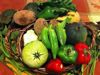 イメージ 農業 野菜