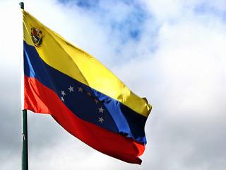 ベネズエラ Flag