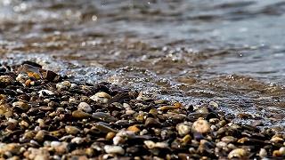 water-243910_640.jpg